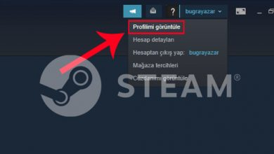 Photo of Steam Profil Linki Nasıl Öğrenilir?